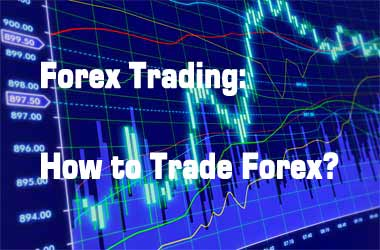 Forex trading currency broker license